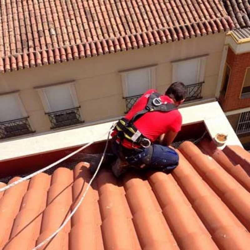 Colocación de sistema anti-aves en cornisa de edificio